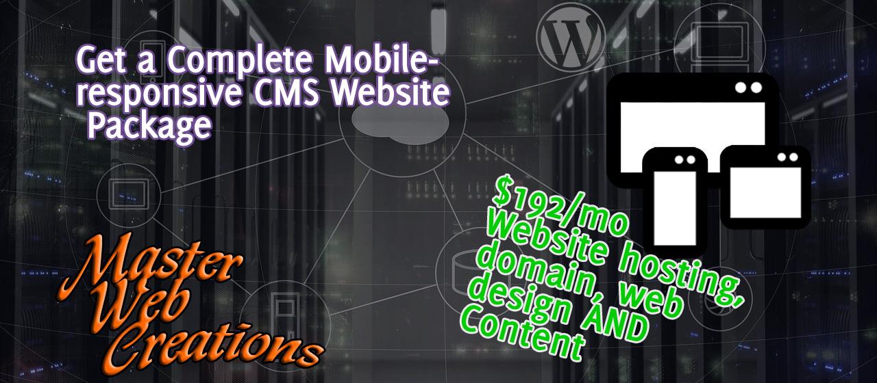 premium wordpress website package